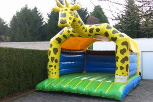 Giraf 600x400